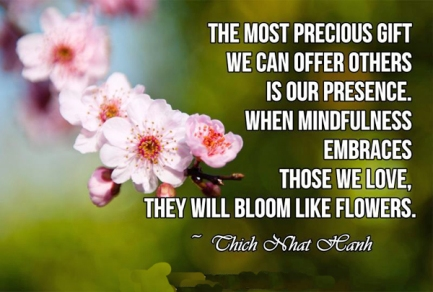 Thich-Nhat-Hahn_the-most-precious-gift