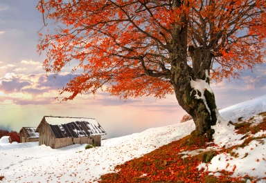 Autumn-and-winter-together
