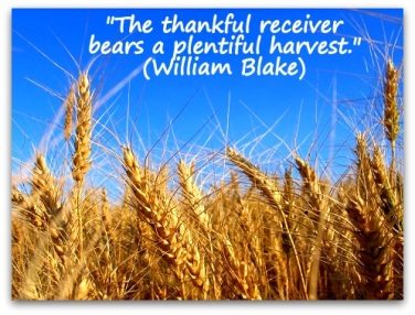 The-thankful-receiver-bears-a-plentiful-harvest.-William-Blake