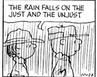 Peanuts_rain