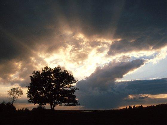 102_Summer_storm_coming_freenature_landscapes_computerdesktop_wallpaper_l