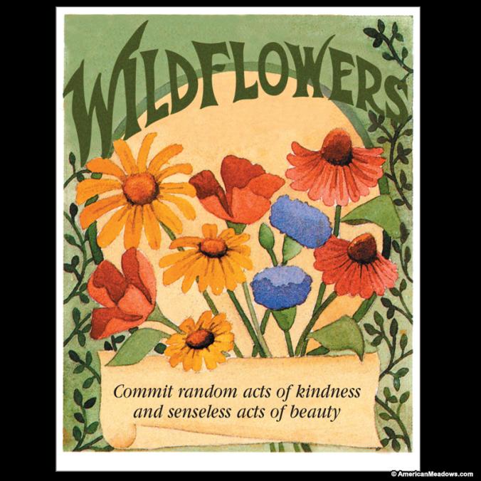 random_acts_wildflower_-_front